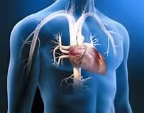 心脏也有绝症?!心脏衰竭牢记低盐饮食