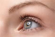 什么是眼结石